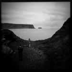 Føling i fjæra, Island (Fjær (Foto: Morten Skogly)