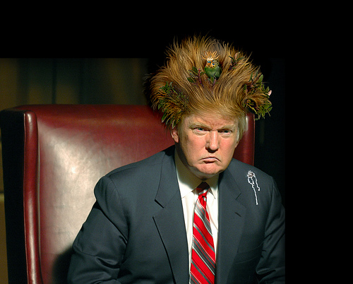Trump's Birdnest